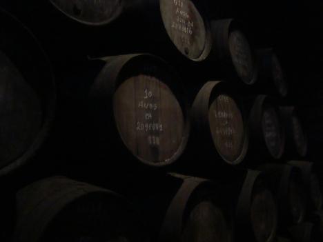 Bodega de Vinos en la casa Vasconcellos, Oporto.